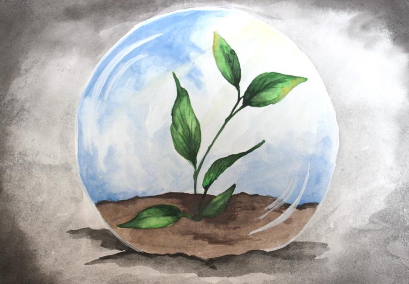 Картинки рисуем экологию
