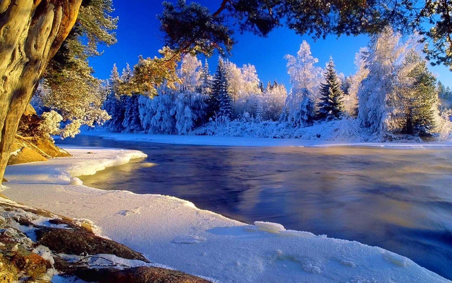 располагается фотографии с зимними пейзажами быстро выгорает татуаж